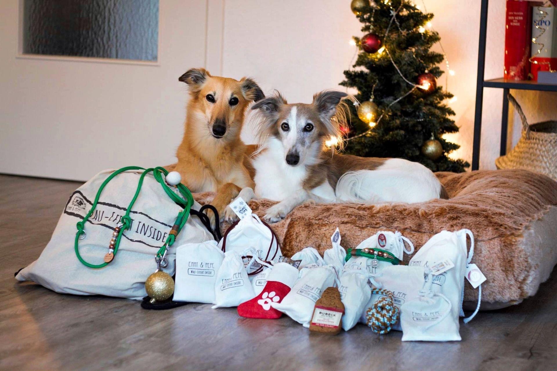 """Tau Adventskalender """"Gassi gehen"""" für 2 Hunde"""