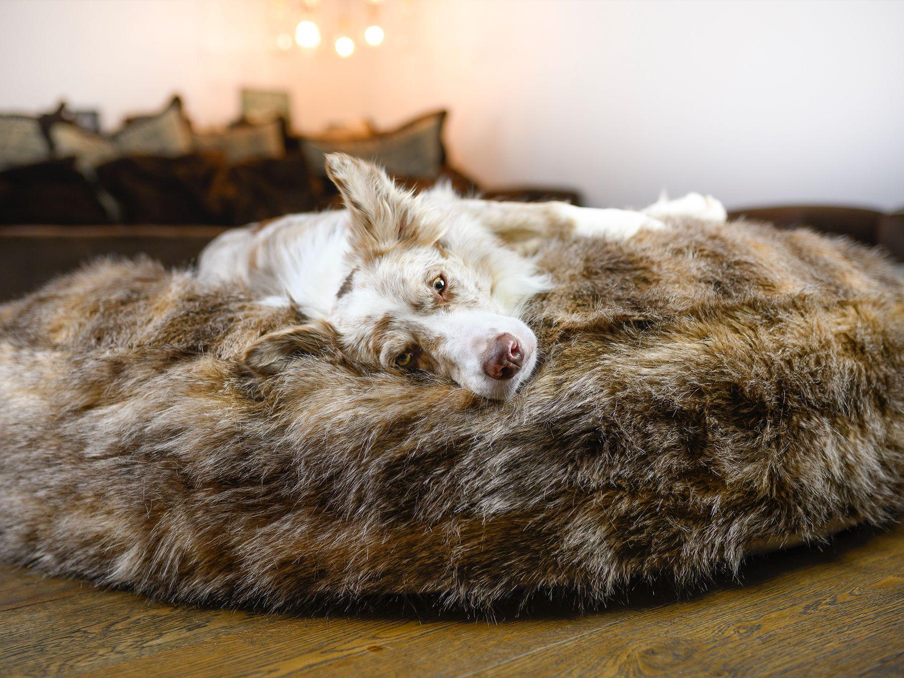 Wau-Sleep Streifenhörnchen