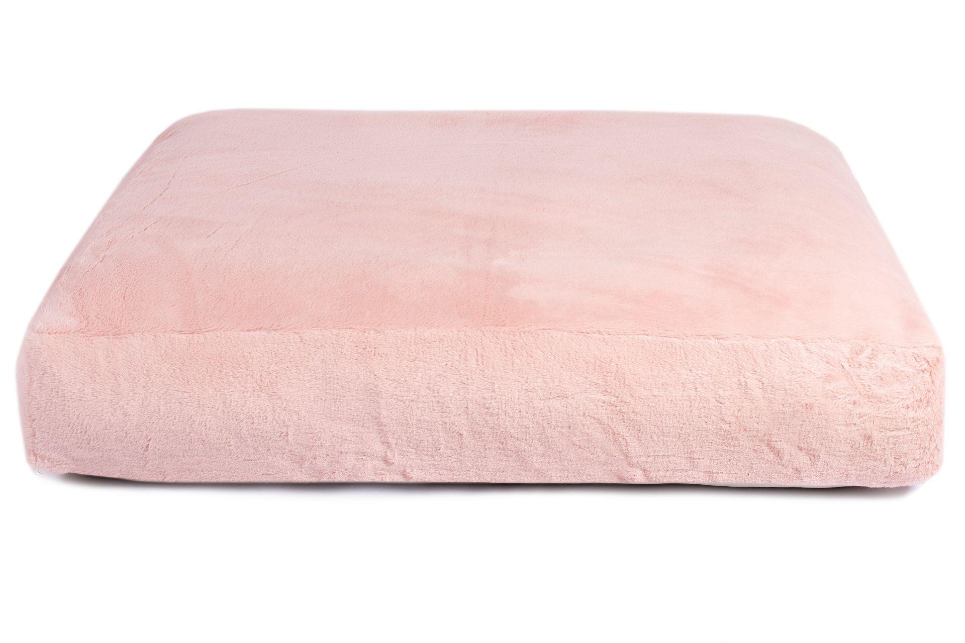 Wau-Sleep Emmy