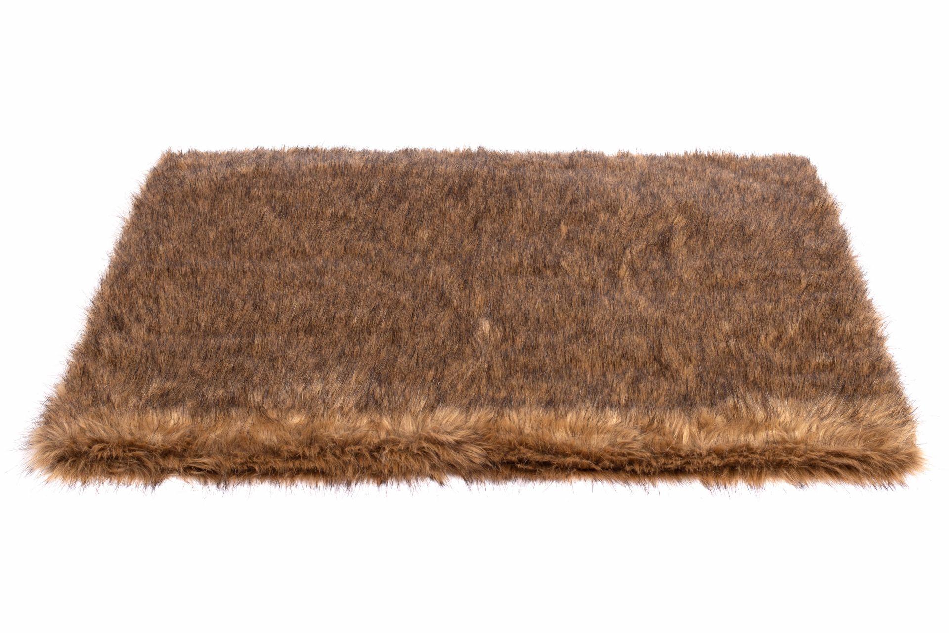 Wau-Floor Catweazle